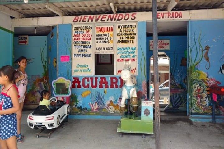 El Acuario te espera con sus puertas abiertas para que admires todas las especies con las que cuenta. Foto: Ready Map México