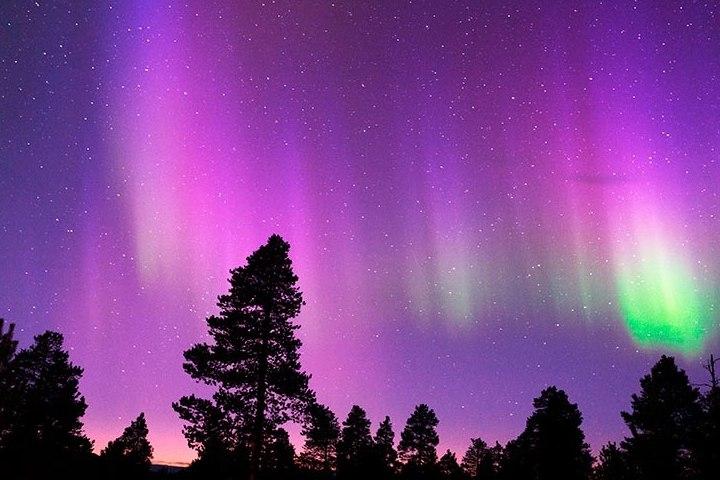 Admira las auroras boreales en Cabo Norte, Noruega. Foto: Archivo