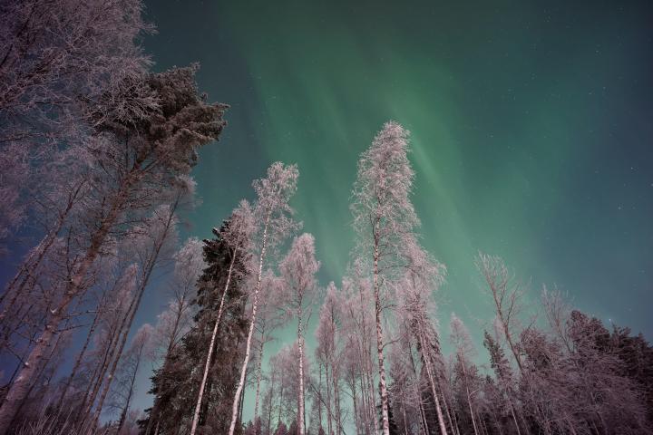 Auroras Boreales vistas en Laponia finlandesa. Foto: Vicent Guth