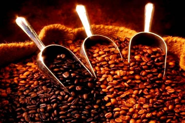 Café Chiapaneco, en la élite de la producción nacional y mundial. Foto: Economiahoy.mx