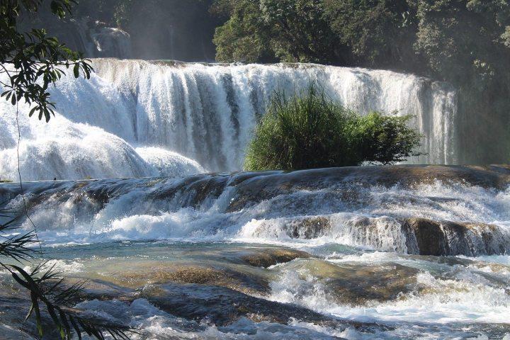 Cascadas de Agua Azul, Chiapas. Foto: Sandra Gabriel