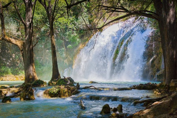 Conoce las cascadas de Chiapas, ¡Te encantarán! Foto: Carlos Alcazar