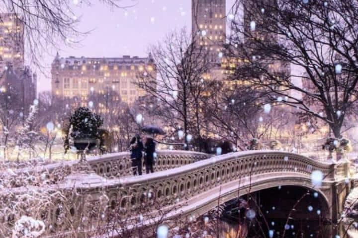 Central Park en la época Navideña. Foto: centralparknyc