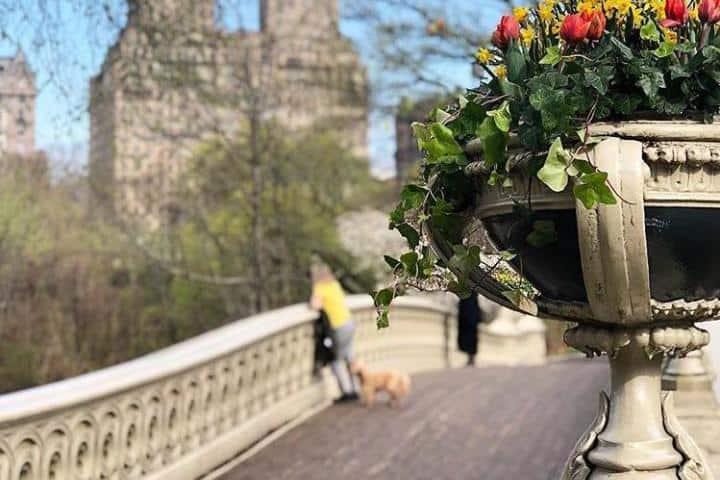 Central Park el resto del año, ¿A poco no cambia? Foto: centralparknyc