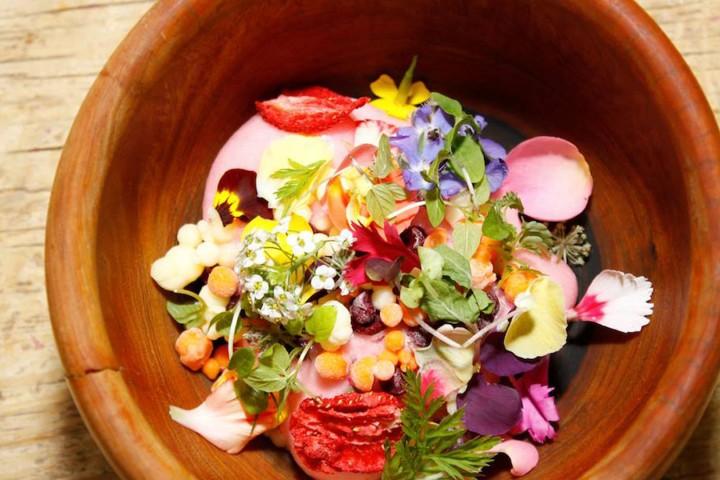 Festival gastronomico el saber del sabor Oaxaca