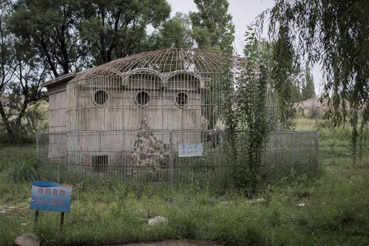 Jardín abandonado Foto: El Español