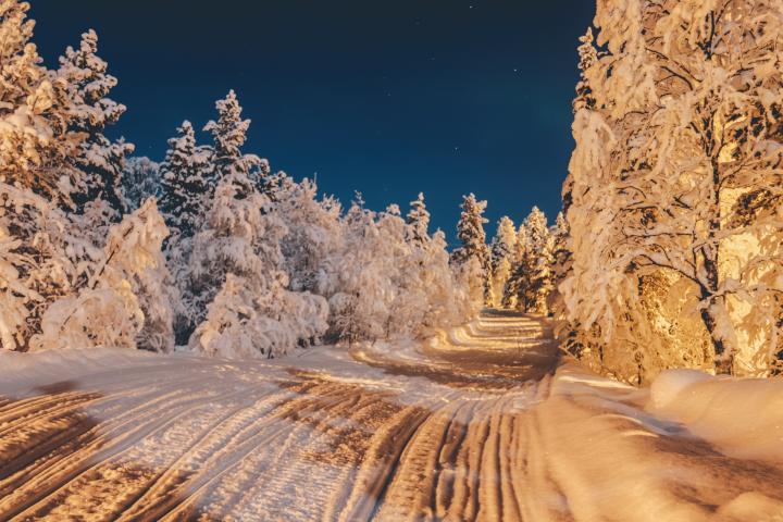 Laponia finlandesa, un lugar ideal para pasar la Navidad. Foto: Ethan Hu