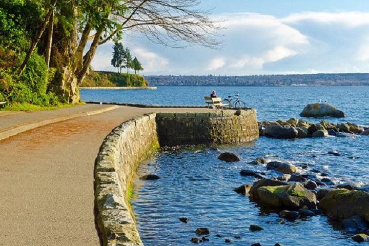 Una vista espectacular y una banquita; el Parque Stanley te da todo, tú solo lleva a la persona con la cual platicar. Foto: Pinterest