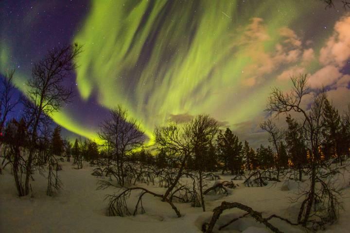 Observa las Auroras Boreales en Laponia. Foto: StarryEarth