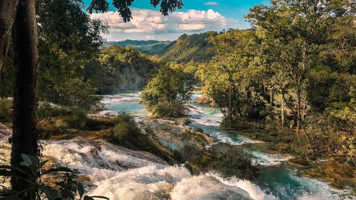 Cascadas de Chiapas. Foto: Lorraine Mojica