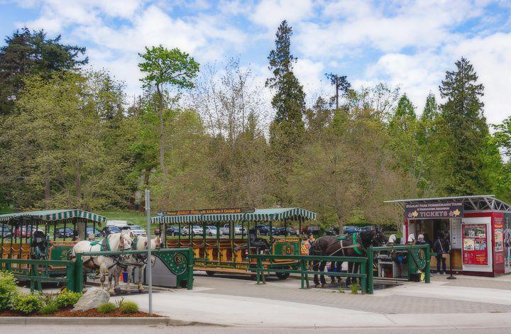 Que hacer en el parque Stanley Canadá. Foto: Xiquinhosilva