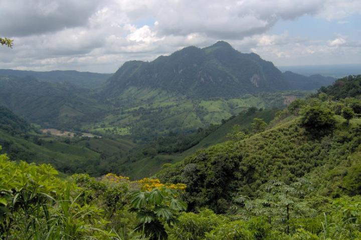 Sierra de teapa Foto: Mapio