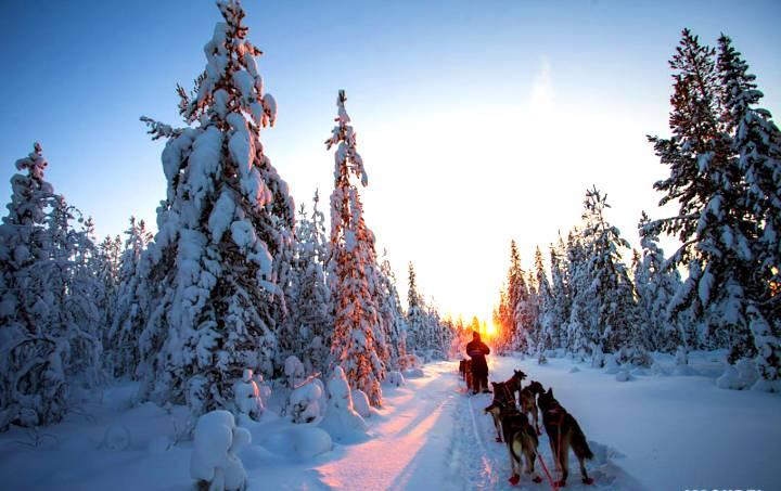 Paseo en la nieve
