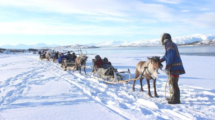 Trineos Cultura Sami. Foto. CheckYeti
