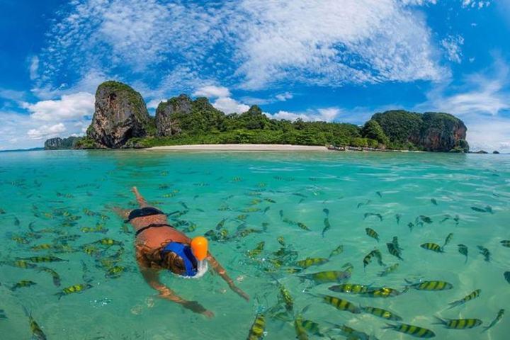 Buceo en Islas Phi Phi Foto: Viator