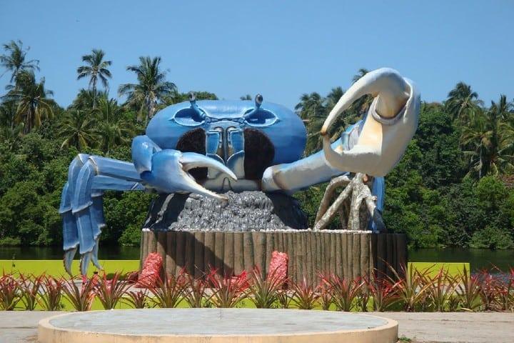 Puerto Ceiba, el lugar perfecto para deleitar tu paladar Foto: Playas