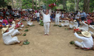 Ritual sardina ciega Foto: wikipedia.