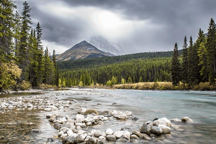 Bnaff-Canada.-Foto-Kai-Vogel