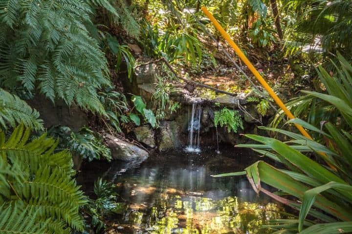 Cascada Foto Airbnb