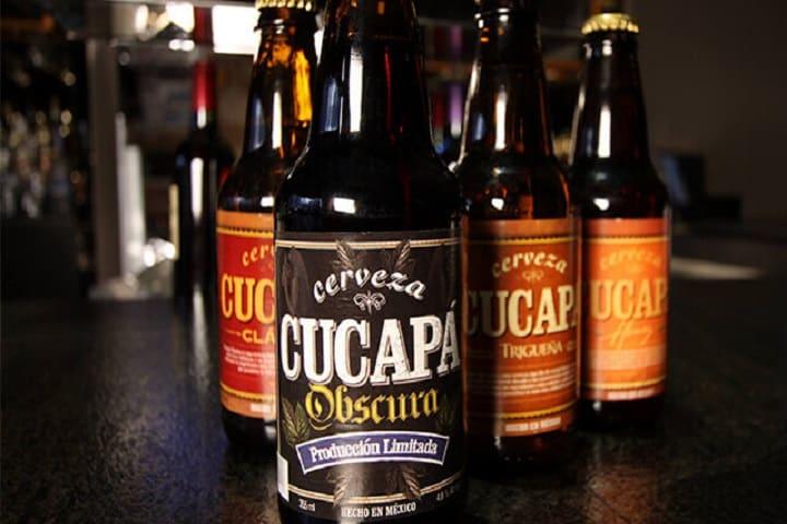 Si sigues resistiéndote al llamado de la cerveza artesanal, se te va a ir de las manos. Foto: Arboleda