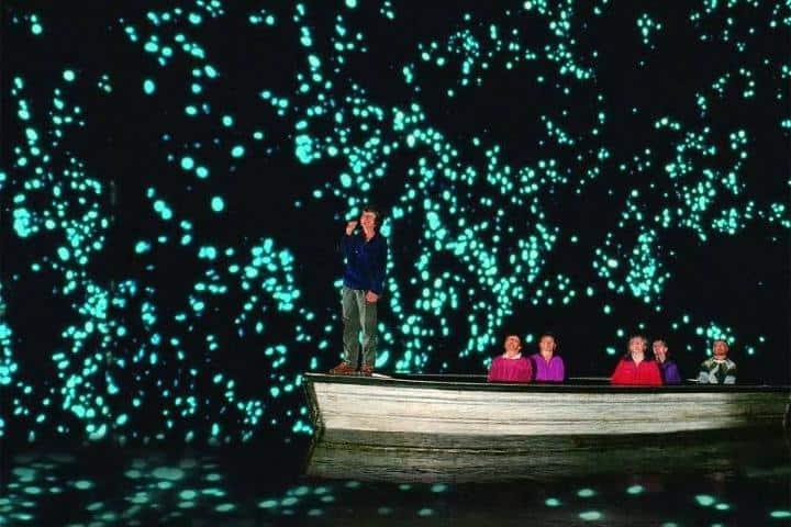 Cueva Glowwarm de Waitomo. Foto: Ivan Varella