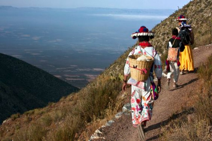 Desierto Wirikuta en San Luis Potosí. Foto Más de MX.