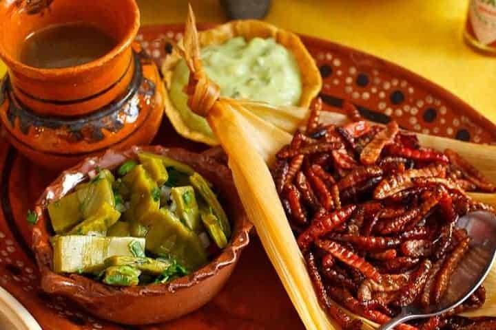 EL-SUMARIO-Feria-gastronómica-ofreció-alimentos-con-insectos-en-Honduras