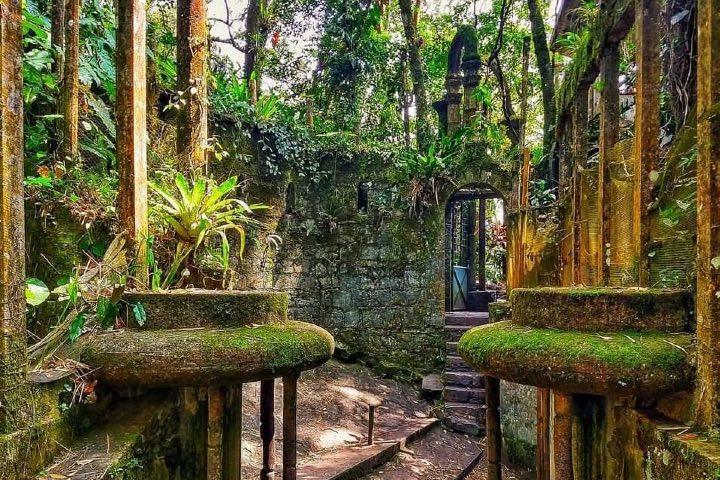 El Jardín Escultórico Edward James forma parte de Great Gardens of the World. Foto: Jardín Escultórico Edward James | Facebook
