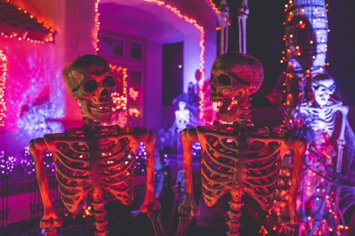 Halloween en Florida. Foto Neonbrand.