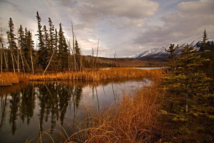 Lago dentro del Parque Nacional Jasper. Foto: bob