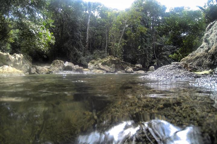 Parque Aguas Blancas Foto: Wikiloc