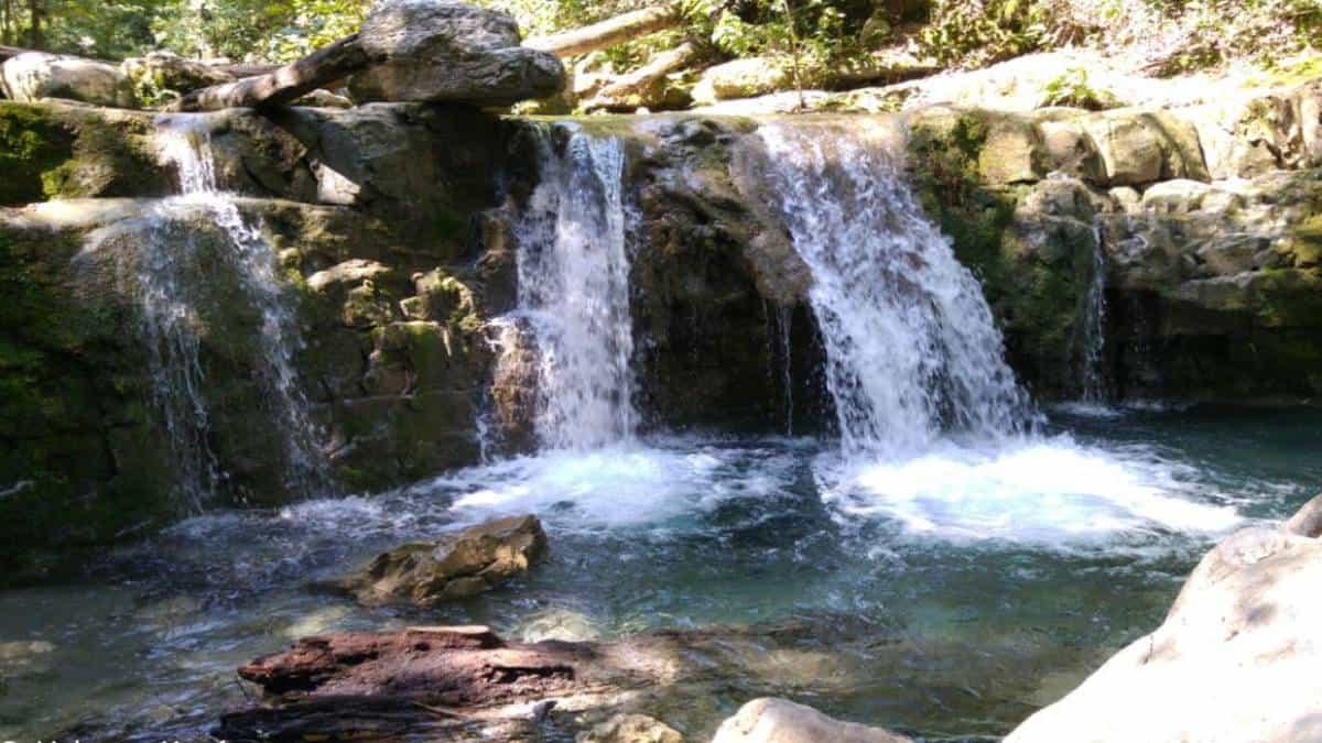 Parque Natural la Estanzuela. Foto: nlgob