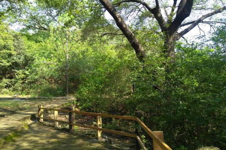Parque natural la estanzuela en Monterrey. Foto Andrés Aperador