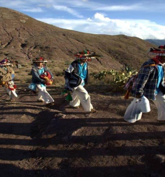 Peregrinación Foto: Desinformemonos