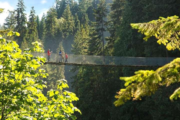 Que-ver-en-el-puente-Capilano-en-Vancouver.-Foto_-CapBridge