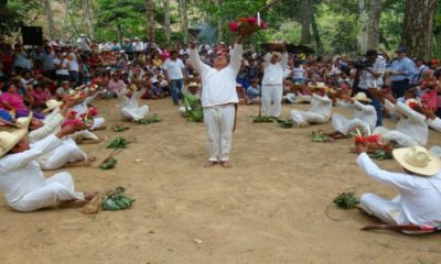 Ritual sardina ciega. Foto wikipedia