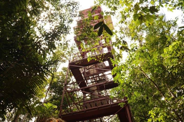Torre de observación del INPA. Foto: g1globo