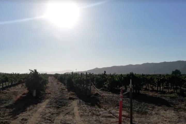 Valle de Guadalupe - Foto Luis Juárez J.