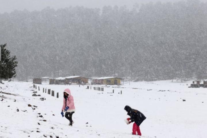 Ajusco se llena de nieve durante el invierno ¡Es bellísimo! Foto: Archivo