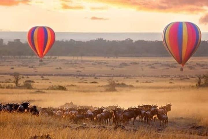Apenas amaneciendo y esperando el movimiento de la gran manada. Foto: masai_mara_safari