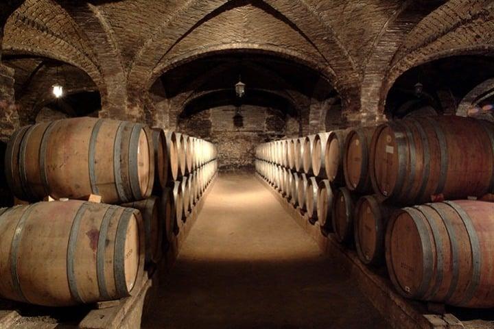 Bodega de vinos. Foto: Viña Santa Rita