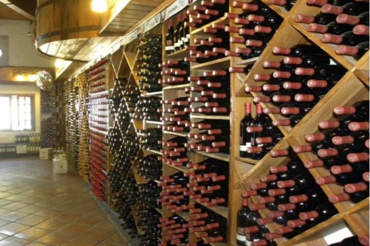 El mundo del vino en la Boutique de Tijuana Foto: Tips para tu viaje