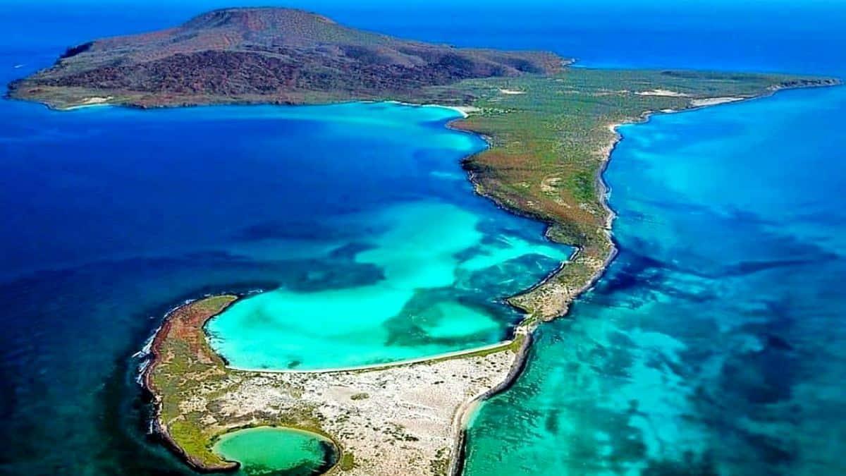 Buceo en Isla Coronado. Baja California. Sur Imagen: fermirandas instagram