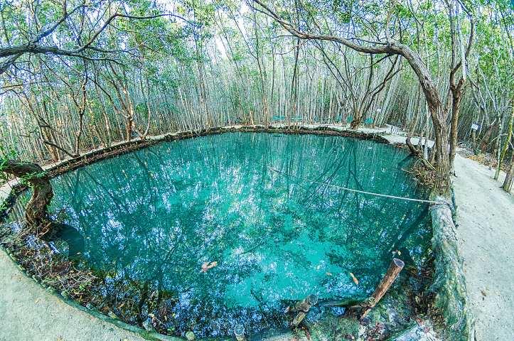 Cenote-del-Corchito