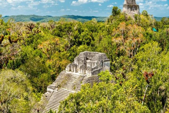 Civilización Maya- Forbes Centroamérica