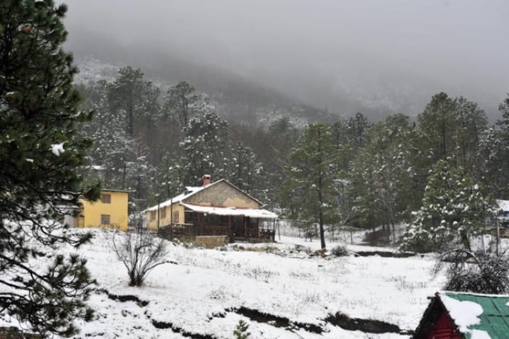 Coahuila tiene nevadas espectaculares. Foto: El Siglo Torreón