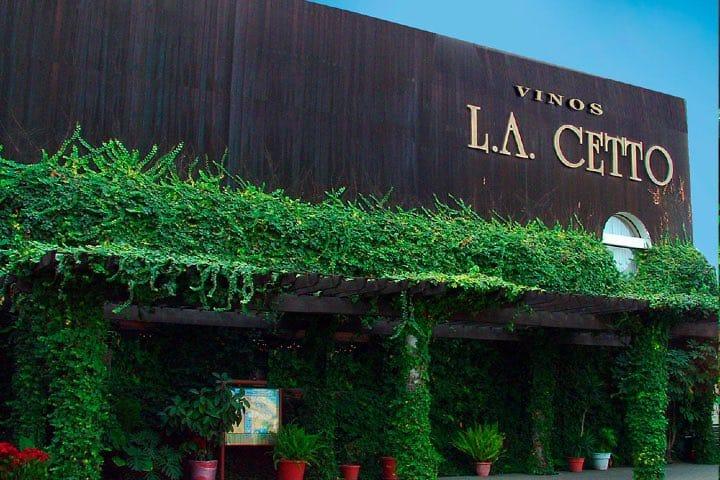 Conoce más de L.A. Cetto ¡Un viñedo que te encantará! Foto: LA Cetto