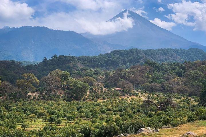 El volcán de Colima desde Comala, una vista hermosa al hacer la Ruta del Café de Colima. Foto: psnajar