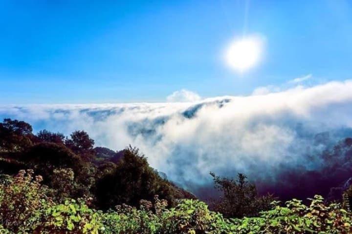 Estarás por encima de la neblina ¡Maravilloso! Foto: Archivo