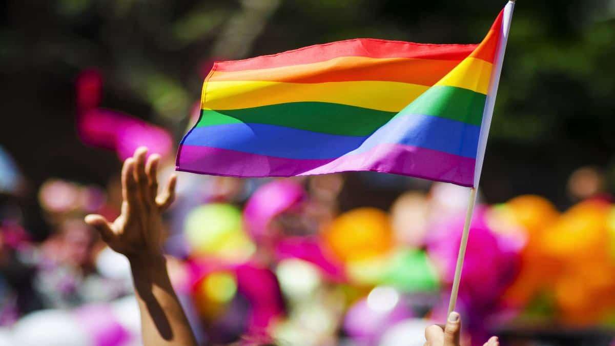 Hoteles LGBT en Ciudad de México. Foto: Archivo